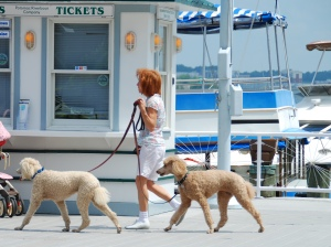 2009_05_16_Old_Town_Waterfront_1036_edited-1